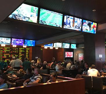 Online Sports Betting Sites Best Sportsbooks in